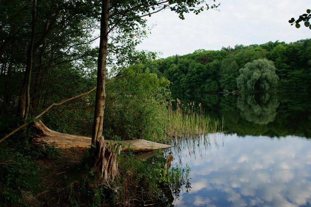 Jezioro Jarosławieckie-pętla puszczykowska i komornicka