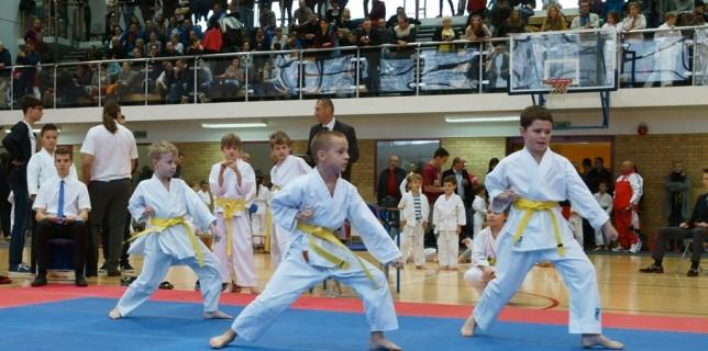 Karatecy Shotokan w Komornikach